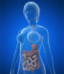 защитить кишечник